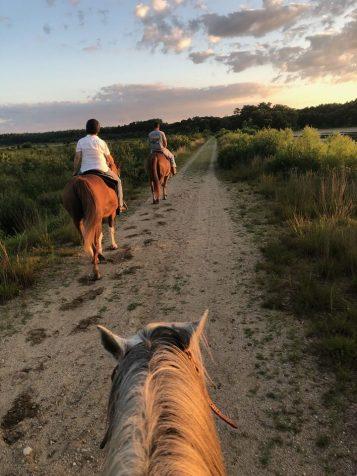 trail ride