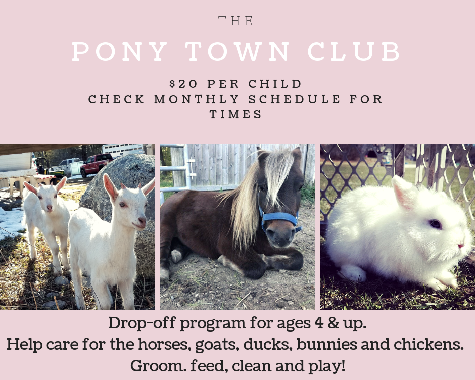 Pony Club.png