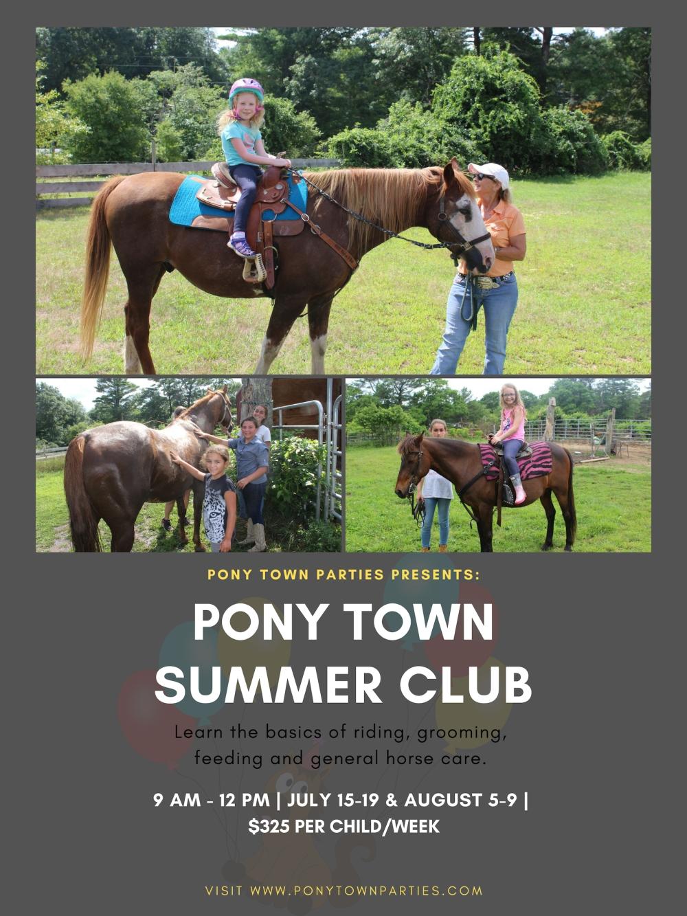 Pony town summer club.jpg