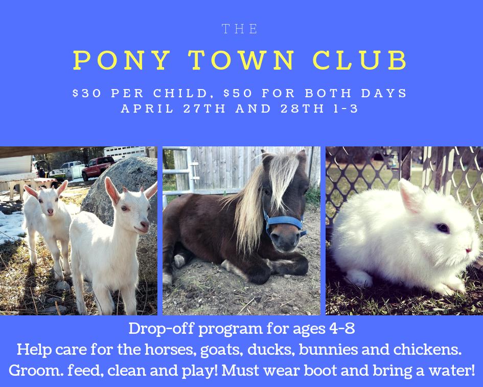 Pony Club 4_27